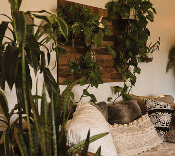 Popular Apartment Gardening Ideas e1607876239195