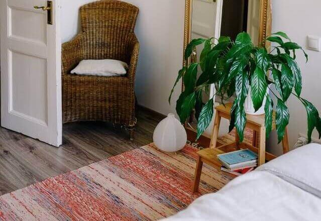 cozy carpeting e1608225253959
